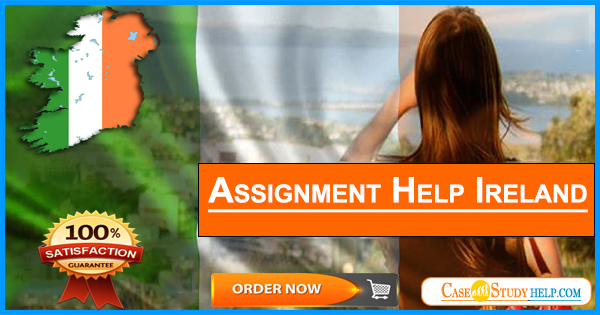 Assignment Help Ireland By Experts  We Provide Genuine Assignment  Assignment Help Ireland By Experts  We Provide Genuine Assignment Writing  Help Services In Case Study