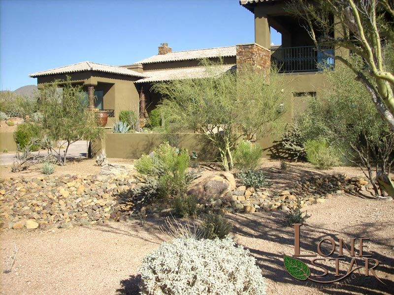 Earth Photo Gallery Desert Landscape Design Desert Landscaping Residential Landscaping