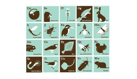alphabet of endangered species in the british isles