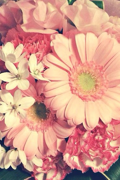 おはな おしゃれまとめの人気アイデア Pinterest Miklos Emi ガーベラ イラスト 美しい花 壁紙 春