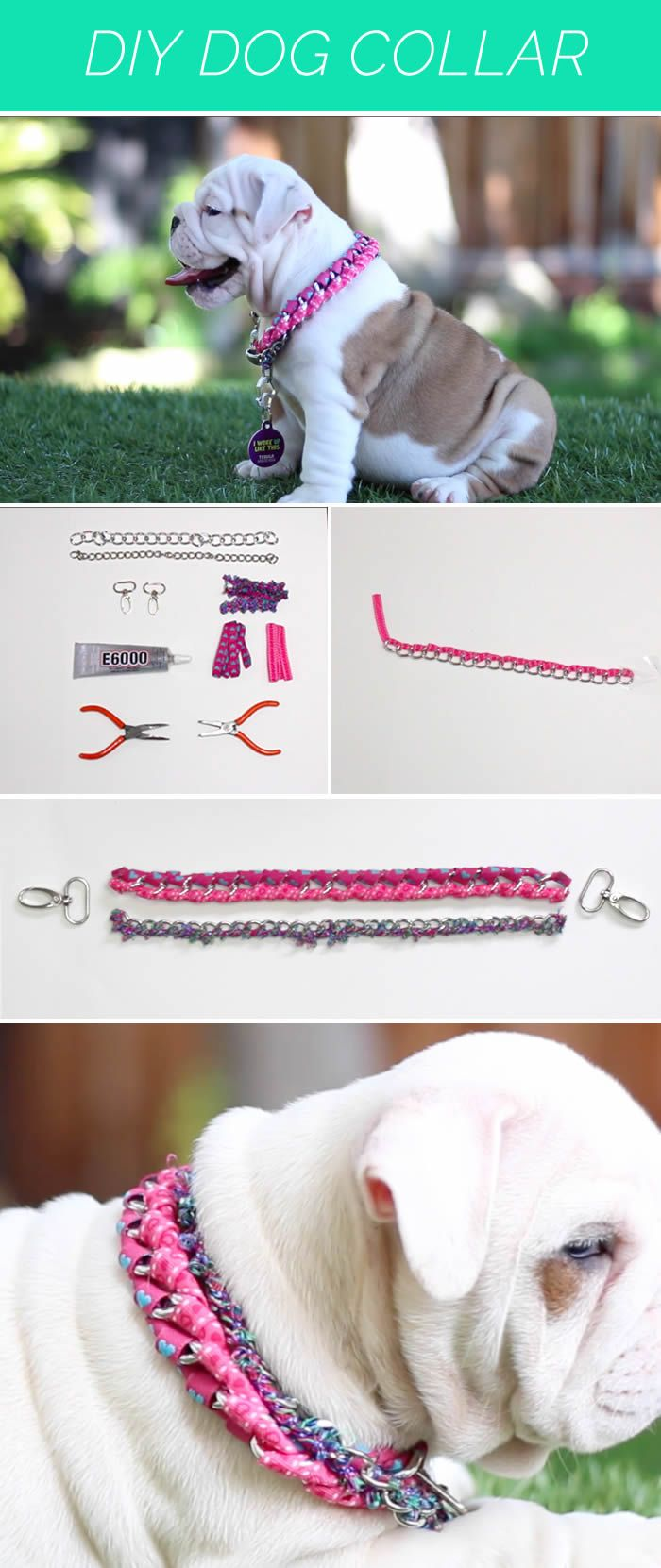 [VIDEO] We're teaching you how to make this awesome dog collar to make your dog look great. #upet