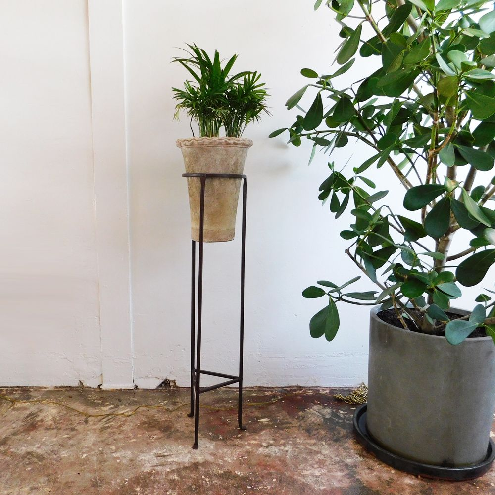 Tall Iron Plant Stand Hand Wrought Iron Extra Tall Plant Stand