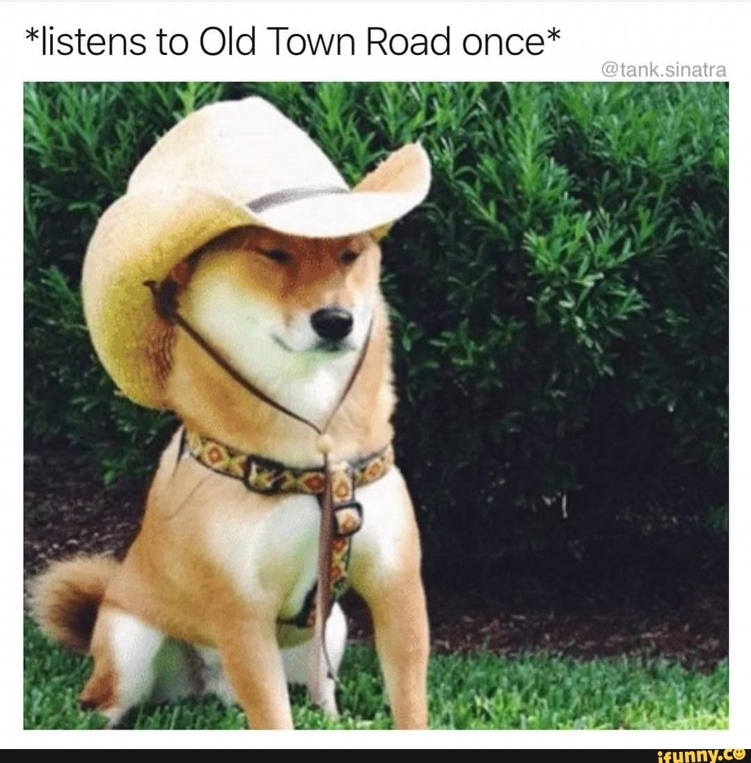 Listens To Old Town Road Once Ifunny Dog Template Dog Exercise Memes
