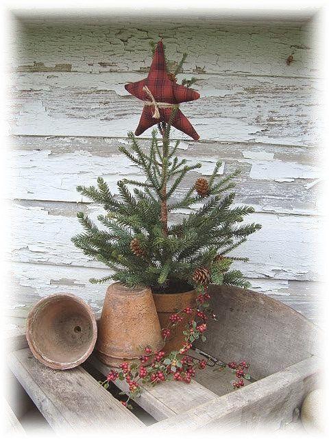 Prim Pine…in a pot…with a stuffed star.    followpics.co