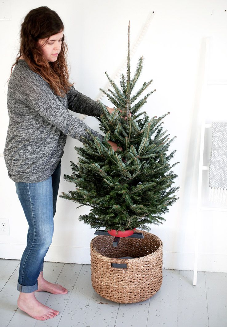 Put A Bucket Upside Down In A Large Basket Small Tree In Small