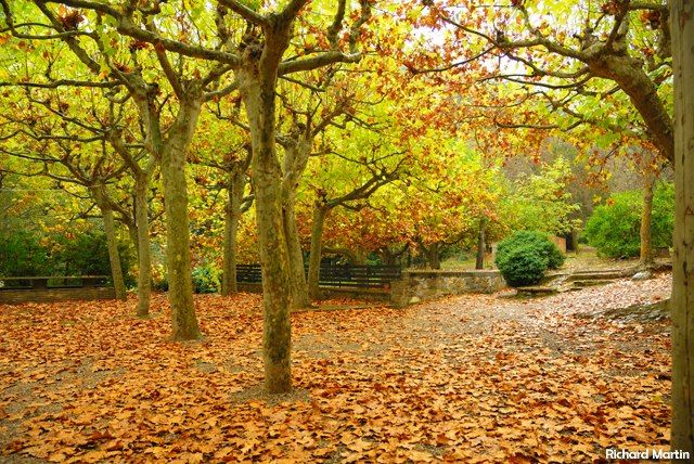 Pin En The Colors Of The Autumn