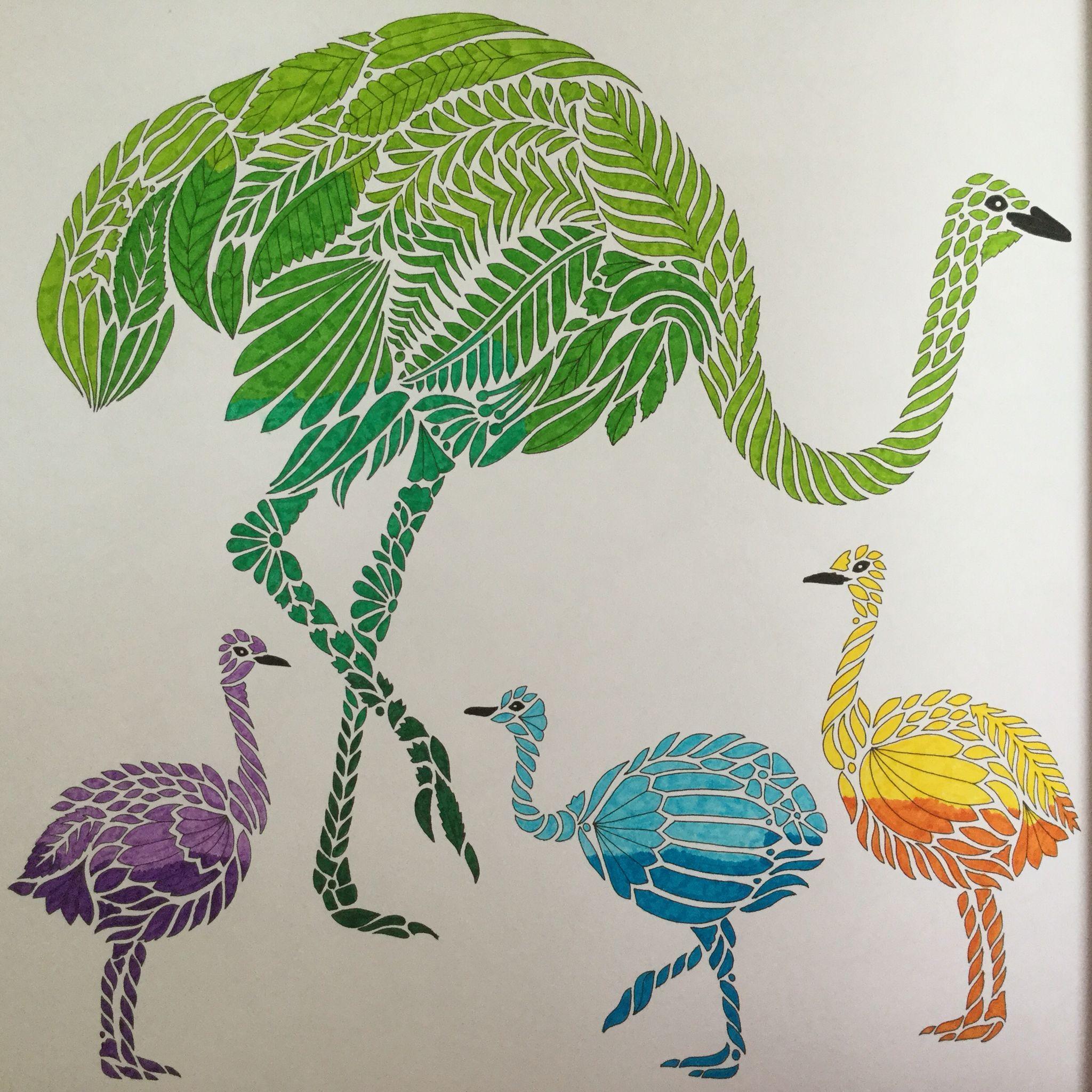 Emu Family Wild Savannah Book Millie Marotta Millie Marotta Coloring Book Millie