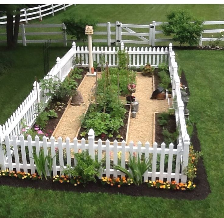 Great Tips on How To Set Up a Vegetable Garden Garden