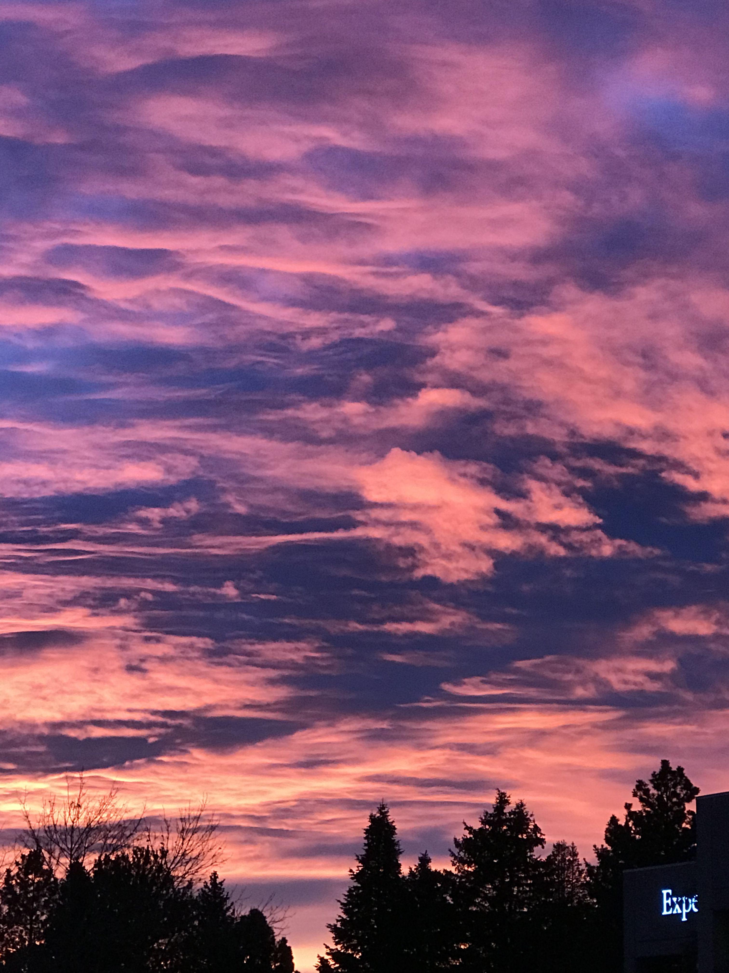 Absolutely Beautiful Amazing Nature Photos Sky Aesthetic Beautiful Nature Pink sky sunset sun trees nature