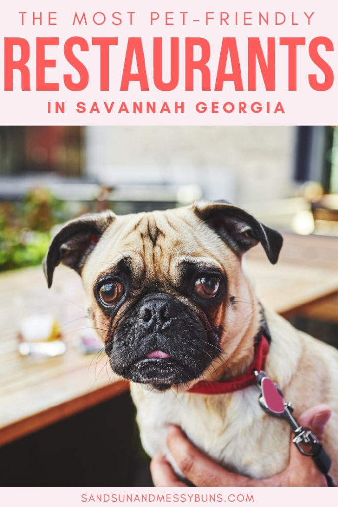 Dog Friendly Restaurants In Savannah Ga Sand Sun Messy Buns In 2020 Savannah Chat Dog Friends Pet Friendly