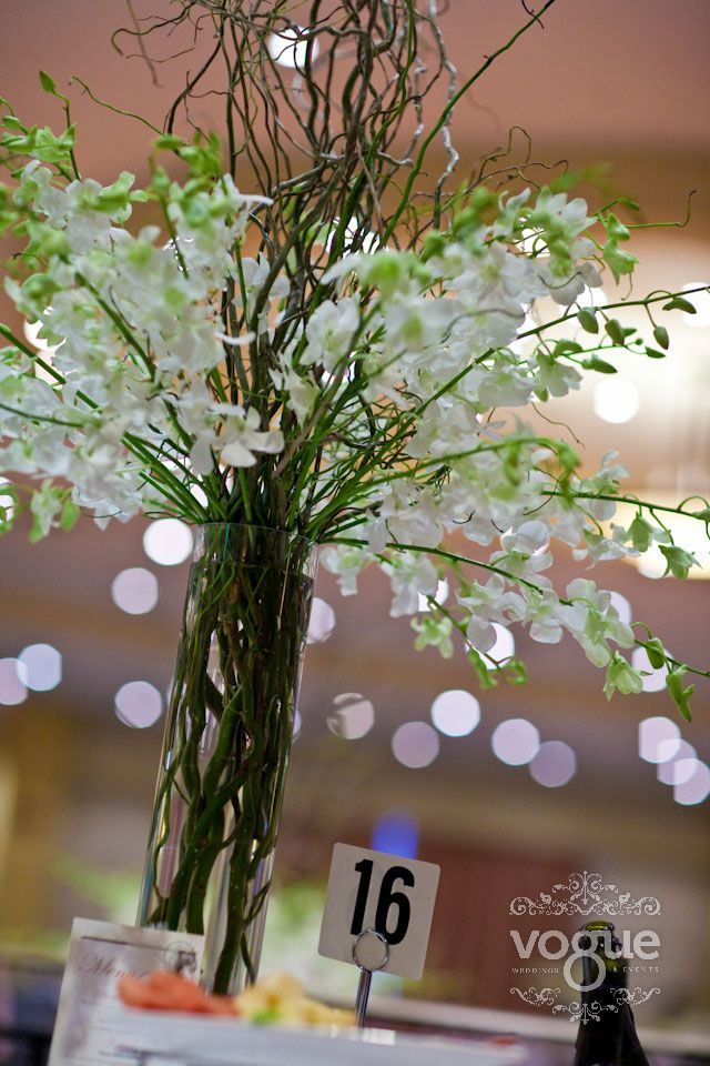 Long Stem White Singaporean Orchids With Curly Willows In A Tall
