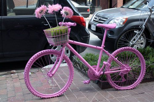 Pink Bike Baked And Wired In Georgetown Bikes Are Fun