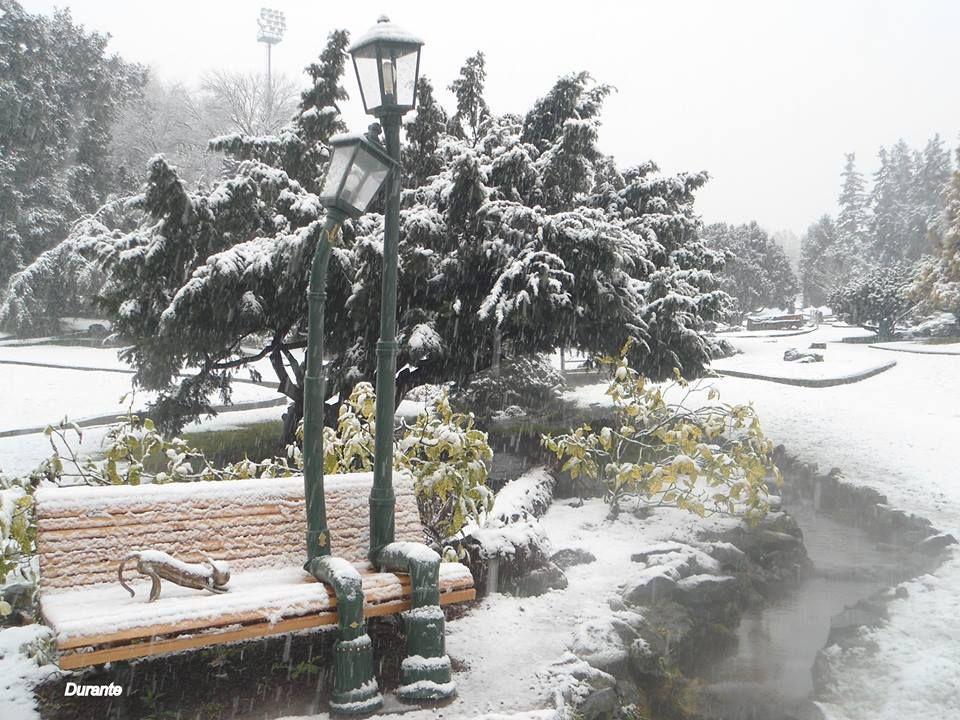 Torino Lampioni Innamorati Al Parco Del Valentino Torino Giardino Roccioso Roccioso