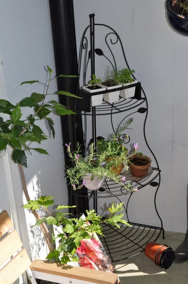 kräuter balkon idee ecke pflanzenständer kleine tontöpfe | balkon, Gartengerate ideen