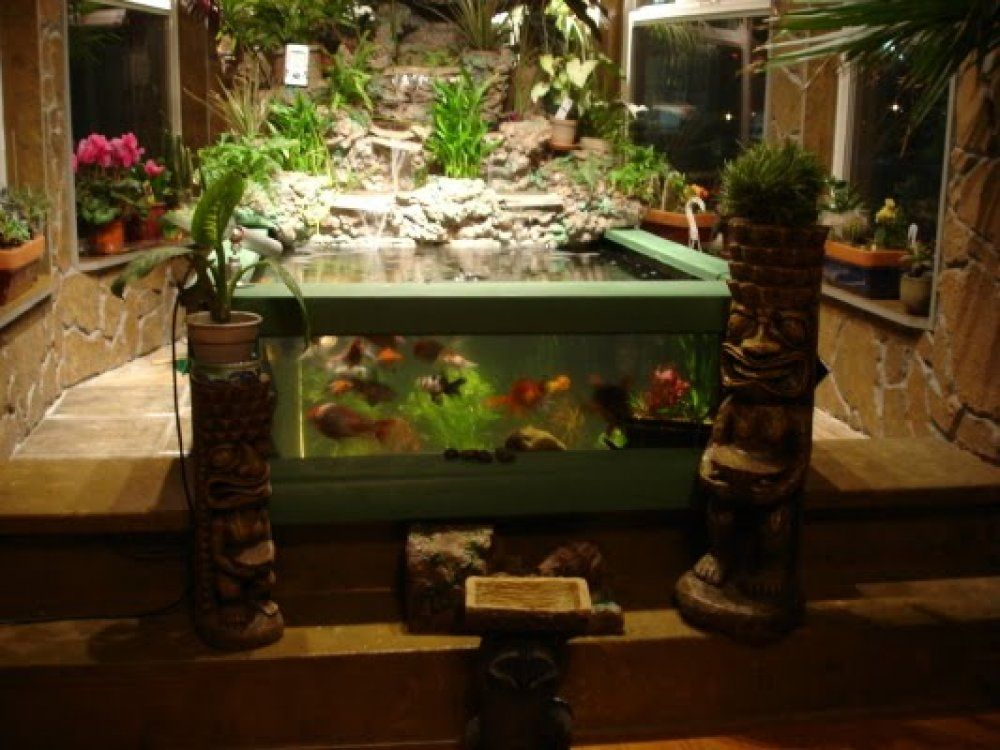 This indoor pond has see through glass panels fishponds for Indoor gardening glasses