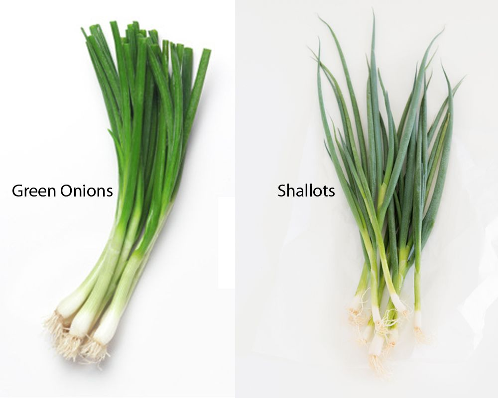 Despite The Similarities Green Onions And Shallots Have Different Properties And Are Used A Little Bit Differently From Each Othe Green Onions Shallots Onion