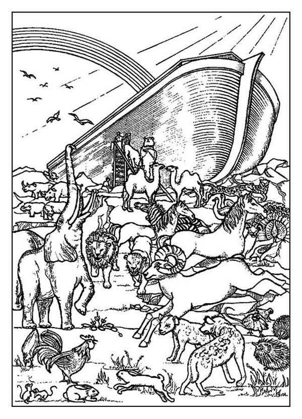 Noahs Ark A Rainbow Behind The Before Flood Coloring Page