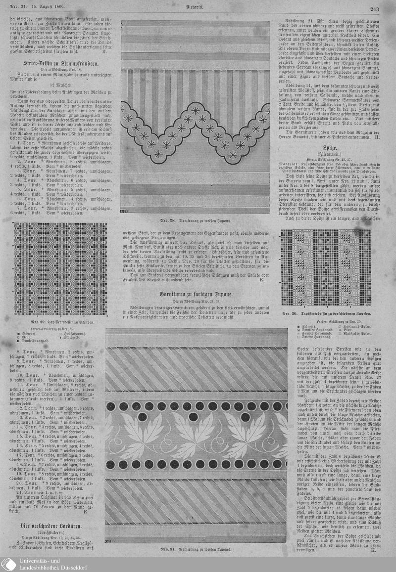 123 [243] - Nro. 31. 15. August - Victoria - Seite - Digitale Sammlungen - Digitale Sammlungen