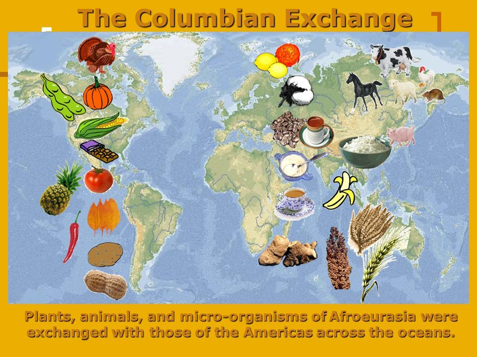 Pin by Karen Davis on Redefining Food Columbian