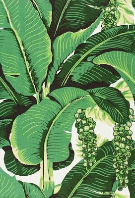 martinique banana leaf wallpaper australia