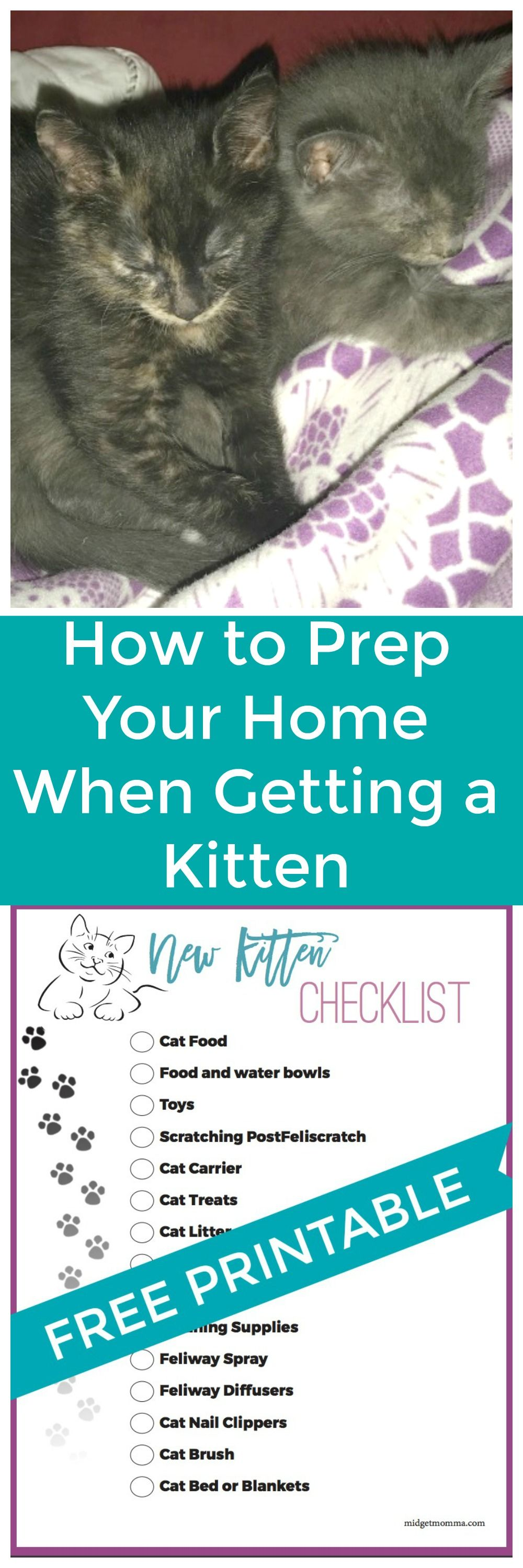 Check List For Getting A New Cat Printable Check List For New Kittens With Everything You Need To Get For A New Kitte Getting A Kitten Kitten Checklist Kitten