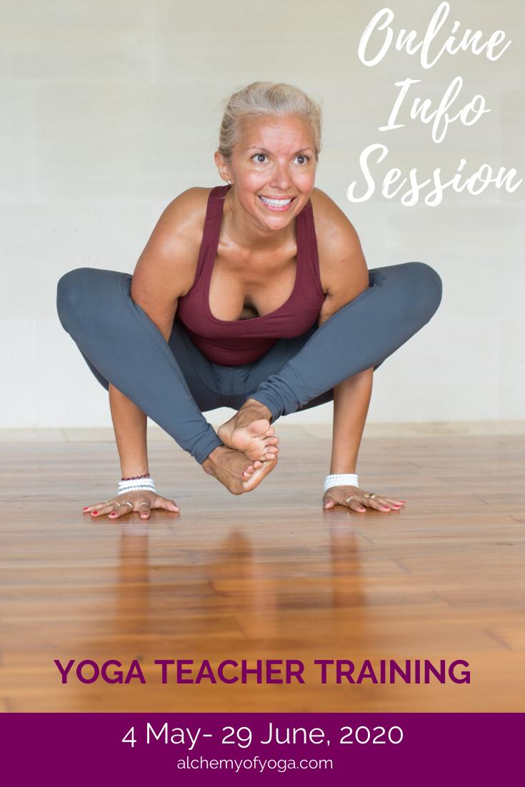 Online Yoga Teacher Training Info Session In 2020 Online Yoga Teacher Training Yoga Teacher Training Yoga Teacher