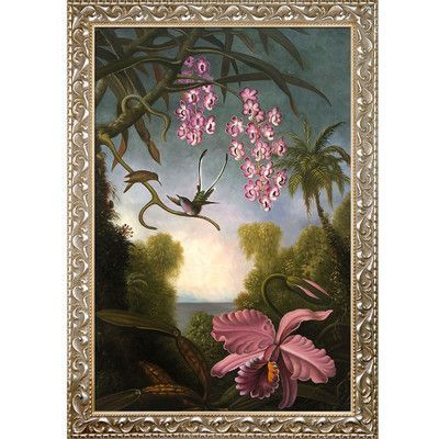 Tori Home Orchids and Spray Orchids with Hummingbird 1890 by Martin Johnson Heade Framed Print Painting