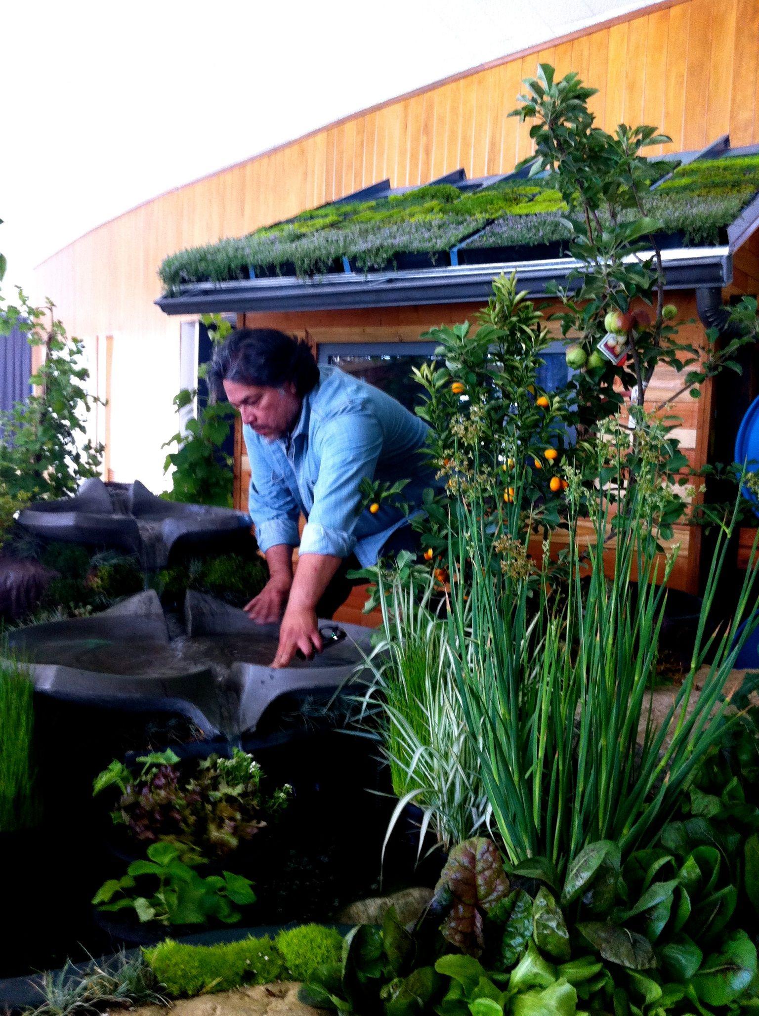 flow form water feature aquaponics edible landscape design