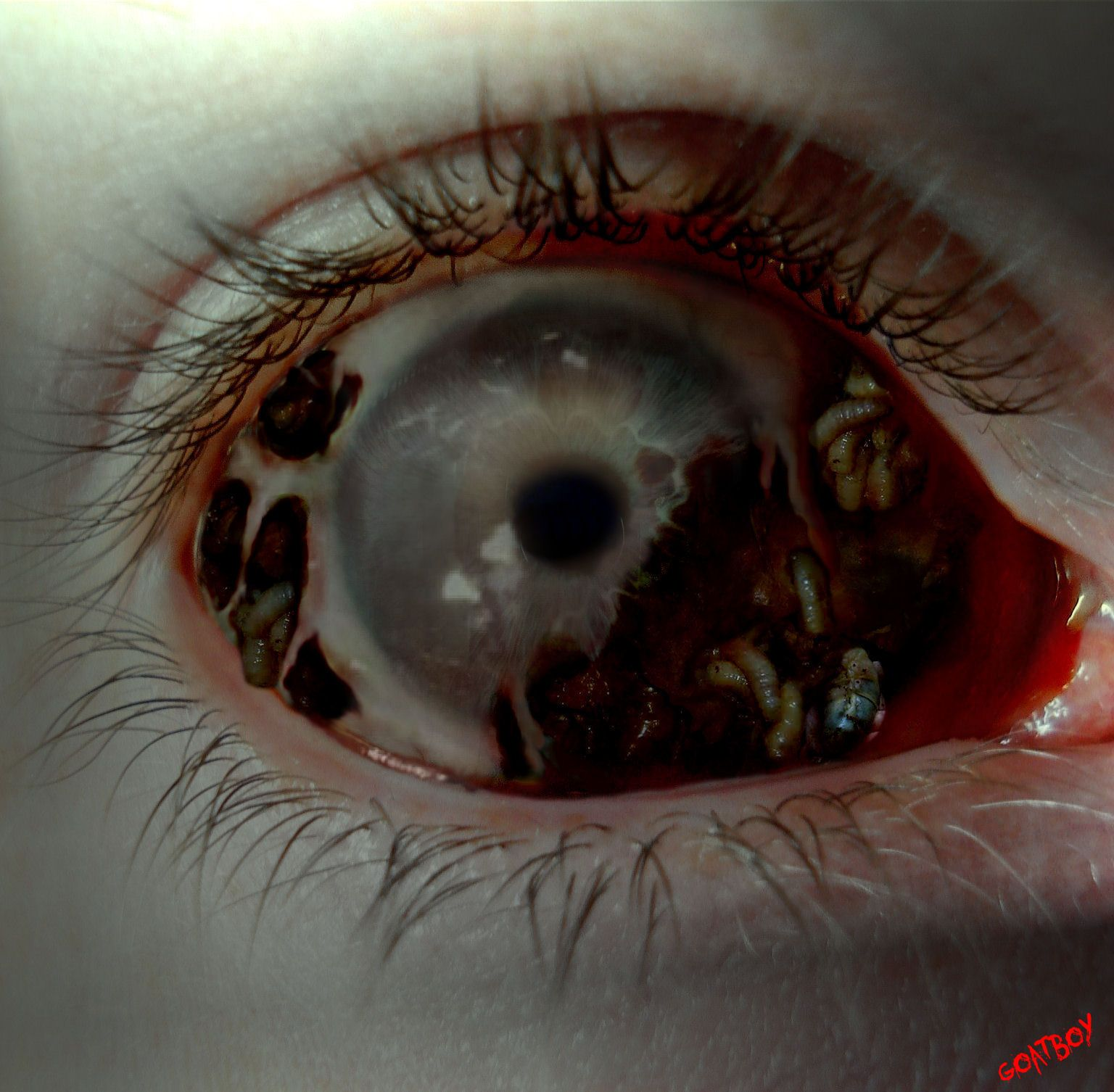 rotten writing pinterest look into my eyes eyes and writing