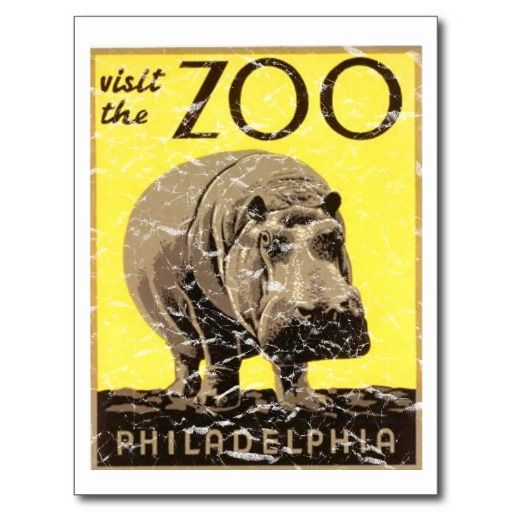 =>Sale on          Philadelphia Zoo-Hippo Post Card           Philadelphia Zoo-Hippo Post Card lowest price for you. In addition you can compare price with another store and read helpful reviews. BuyHow to          Philadelphia Zoo-Hippo Post Card Review from Associated Store with this Deal...Cleck Hot Deals >>> http://www.zazzle.com/philadelphia_zoo_hippo_post_card-239655408703425365?rf=238627982471231924&zbar=1&tc=terrest
