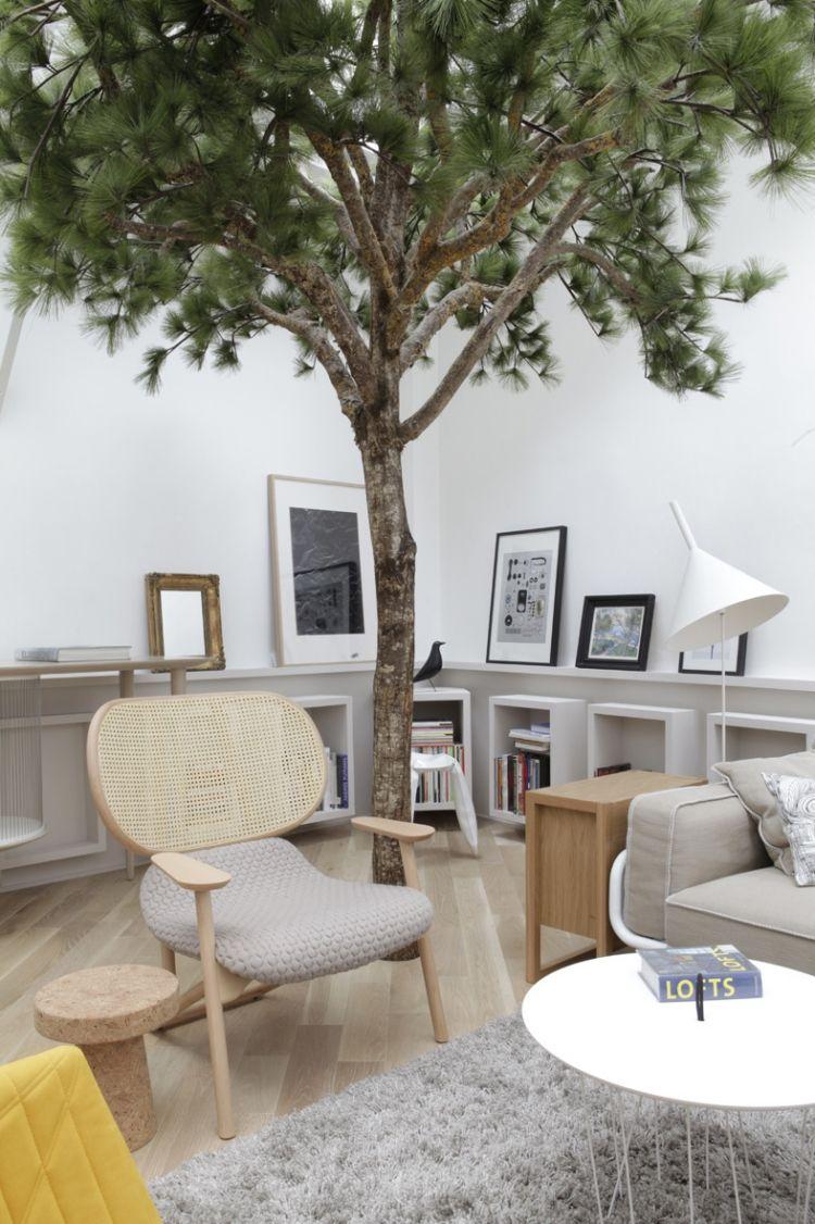Kiefernartiger Baum Im Wohnzimmer Als Highlight   Pariser Wohnung Von  Gregoire De Lafforest