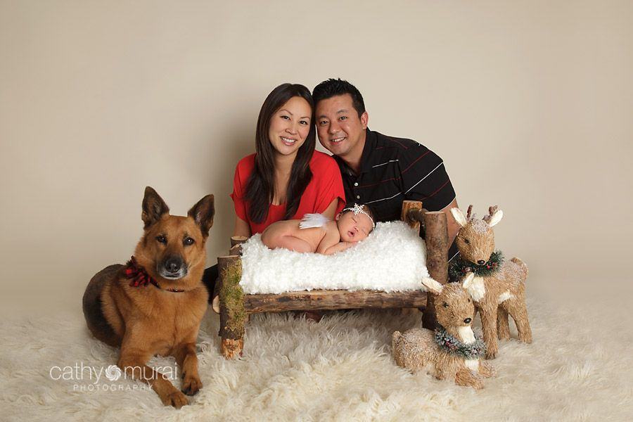 Christmas Family Portrait Picture Including A Newborn Baby Girl And Dog Alhambra San Gabriel Valley CA Studio Photogr