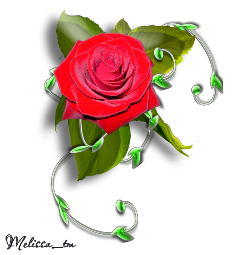 element rose with leaves and swirl png by Melissa-tm
