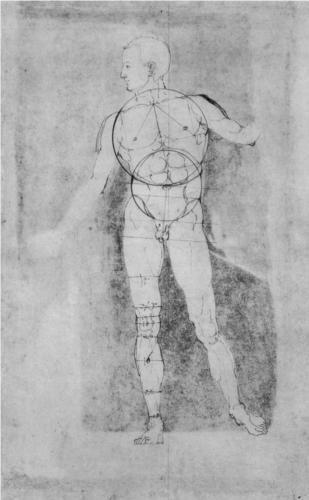 Male Nude (Adam) - Alberto Durero | renacimiento del norte ...