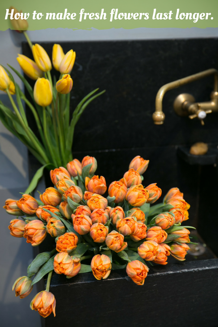 Floral designer Orna Maymon shares tips on how to keep fresh flowers ...