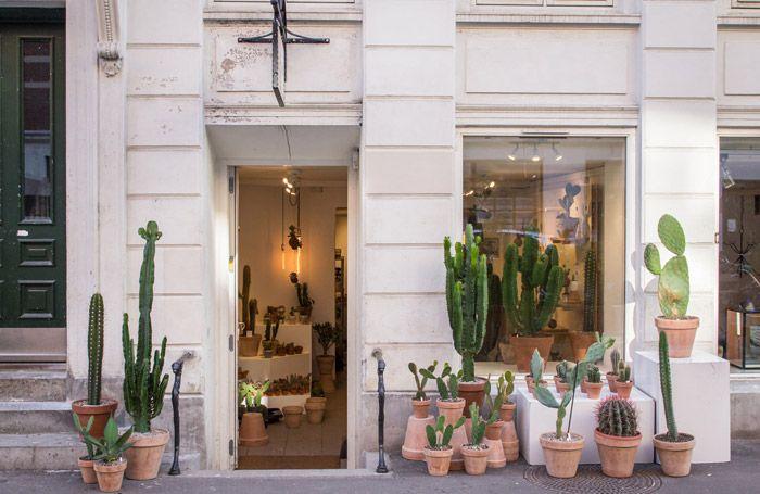 ¿te gusta decorar con cactus y suculentas? No te pierdas esta concept store…