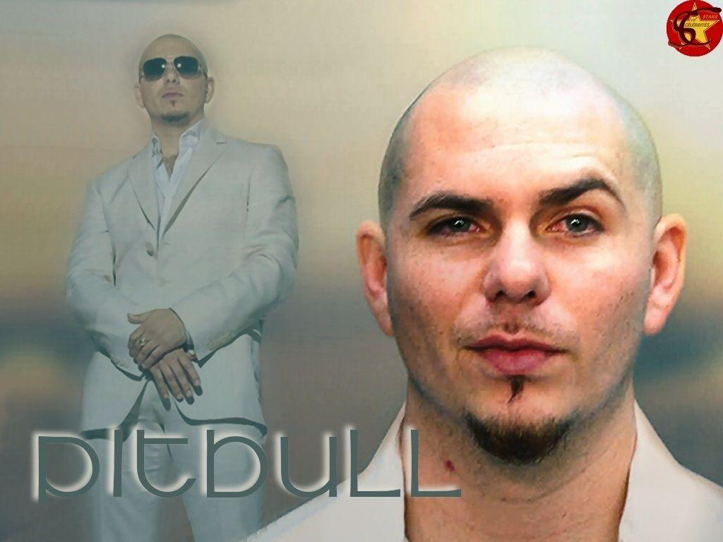 Pitbull Rapper Images Wallpaper Singer