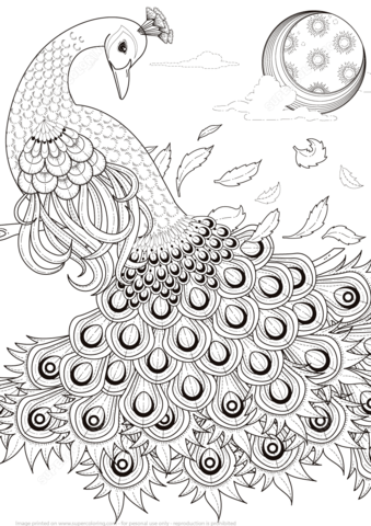 Graceful Peacock coloring page from Peacocks category