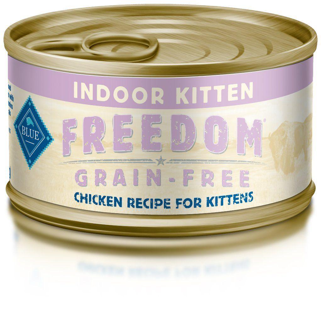 Best wet kitten food brands 2017 for your kitten, check it
