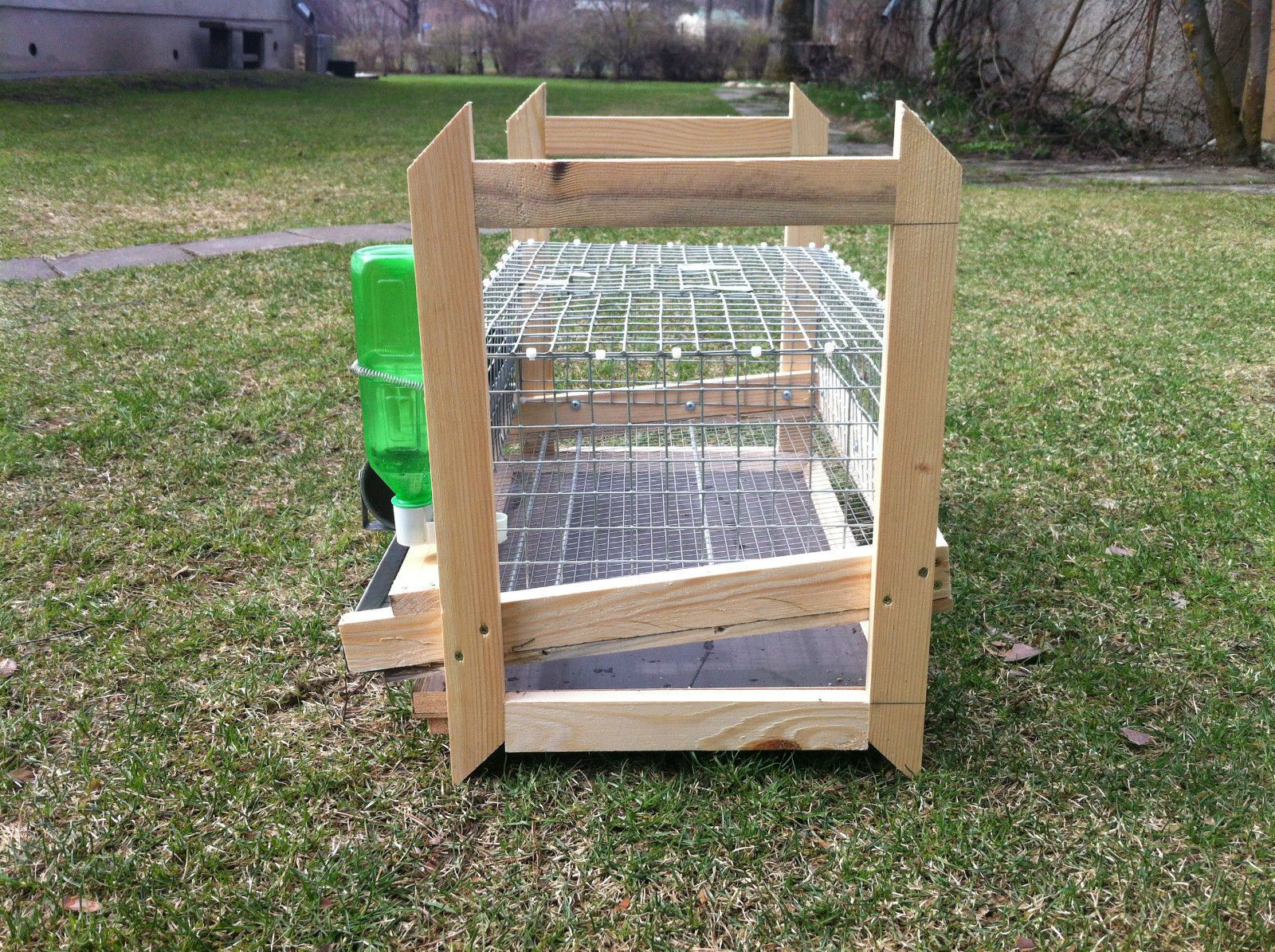 quails cage - photo #13