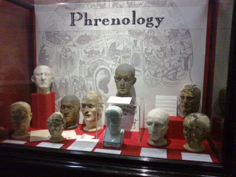 Cabinet of Curiosities collage | swansea-cabinet-of-curiosities-phrenology.jpg
