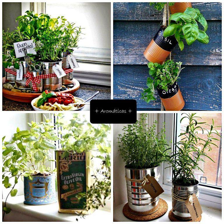 Decoración con plantas de interior y recipientes originales DIY   Cuidar de tus plantas es facilisimo.com