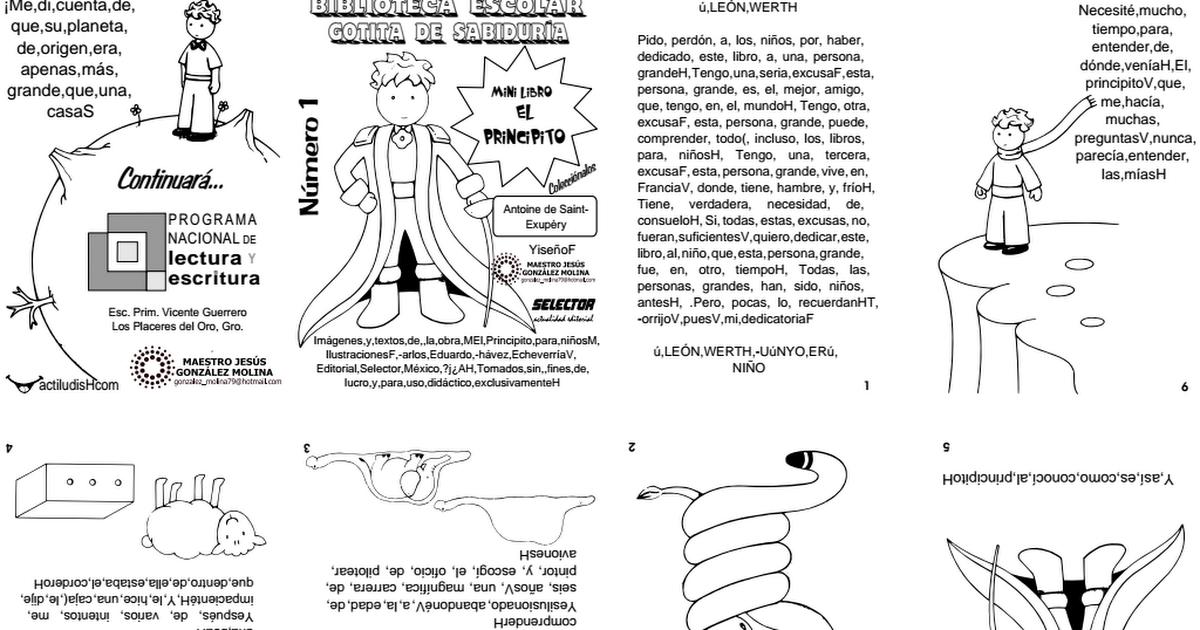 MINI LIBRO EL PRINCIPITO.pdf | principito | Pinterest