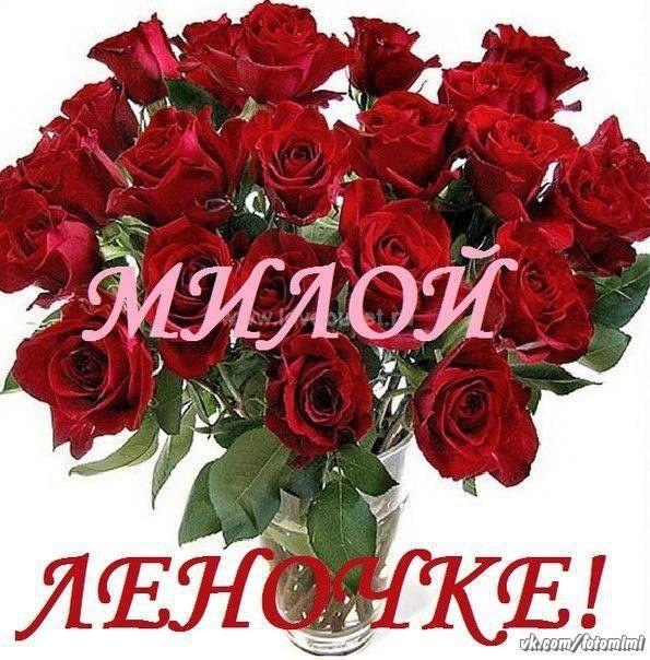 цветы лене розы картинки красивые анимация как выглядели иллюстрации