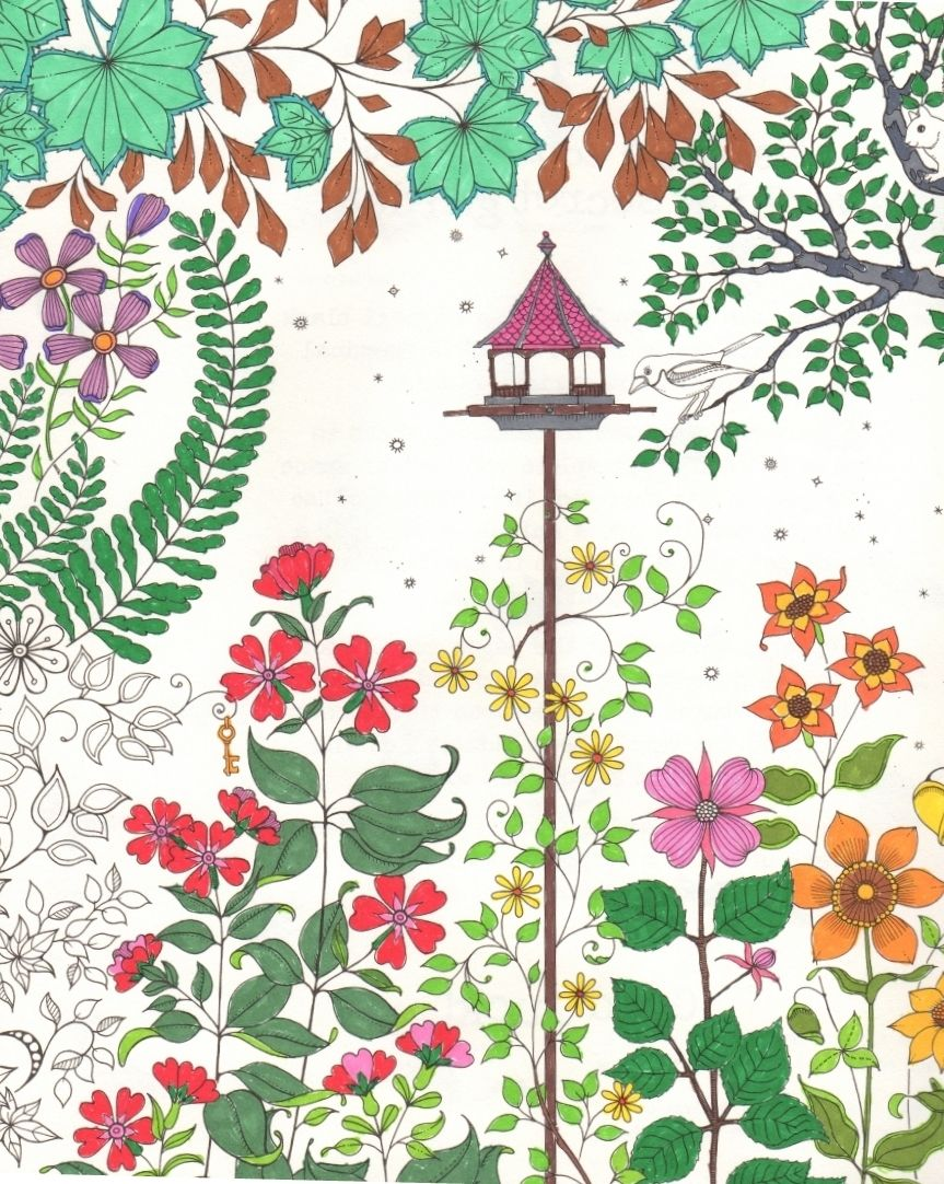 Secret Garden Coloring Book Finished Staying Within The Lines Lizann Carson