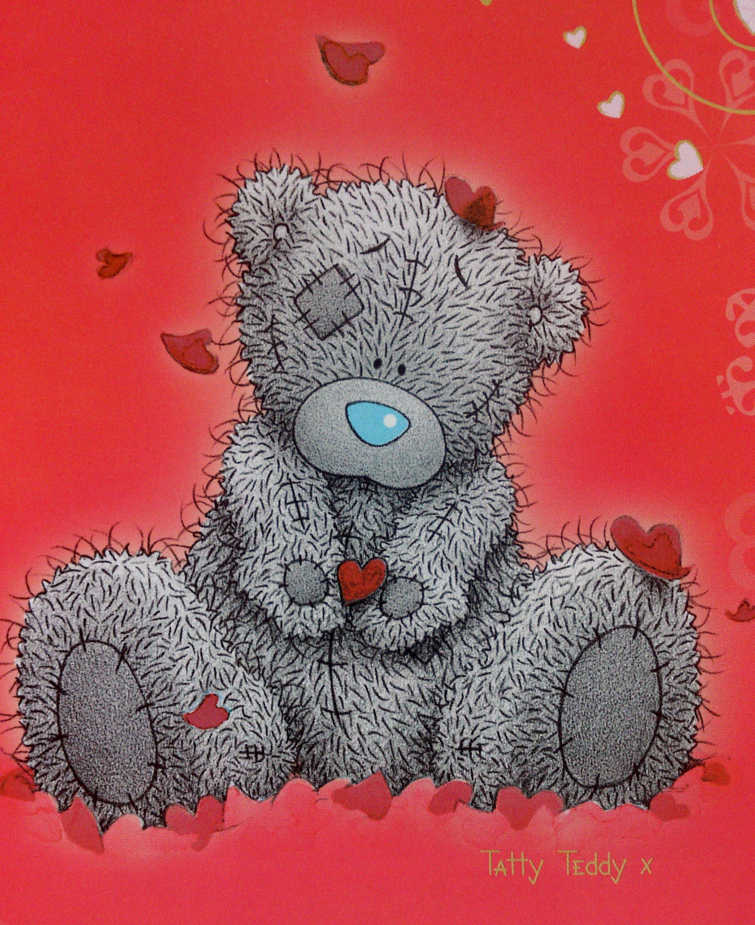 Праздником, картинки с медвежонком тедди в высоком разрешении