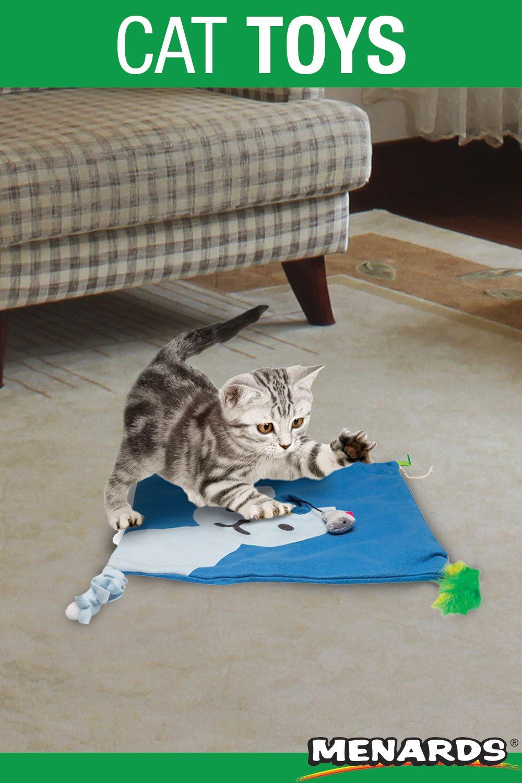 Kitty Cat Mat Cat Toy In 2020 Cat Mat Cat Toys Cats