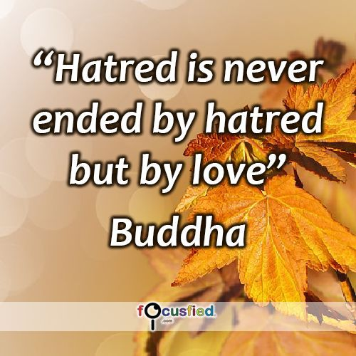 U201cHatred Is Never Ended By Hatred But By Love.u201d #quote #inspire. U201c