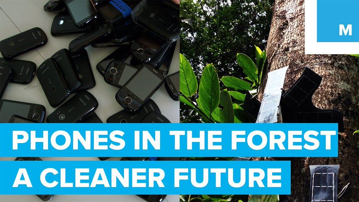 Don't throw away old phones! Recycle them to make a cleaner future  https://t.co/MYO0Yck5ET