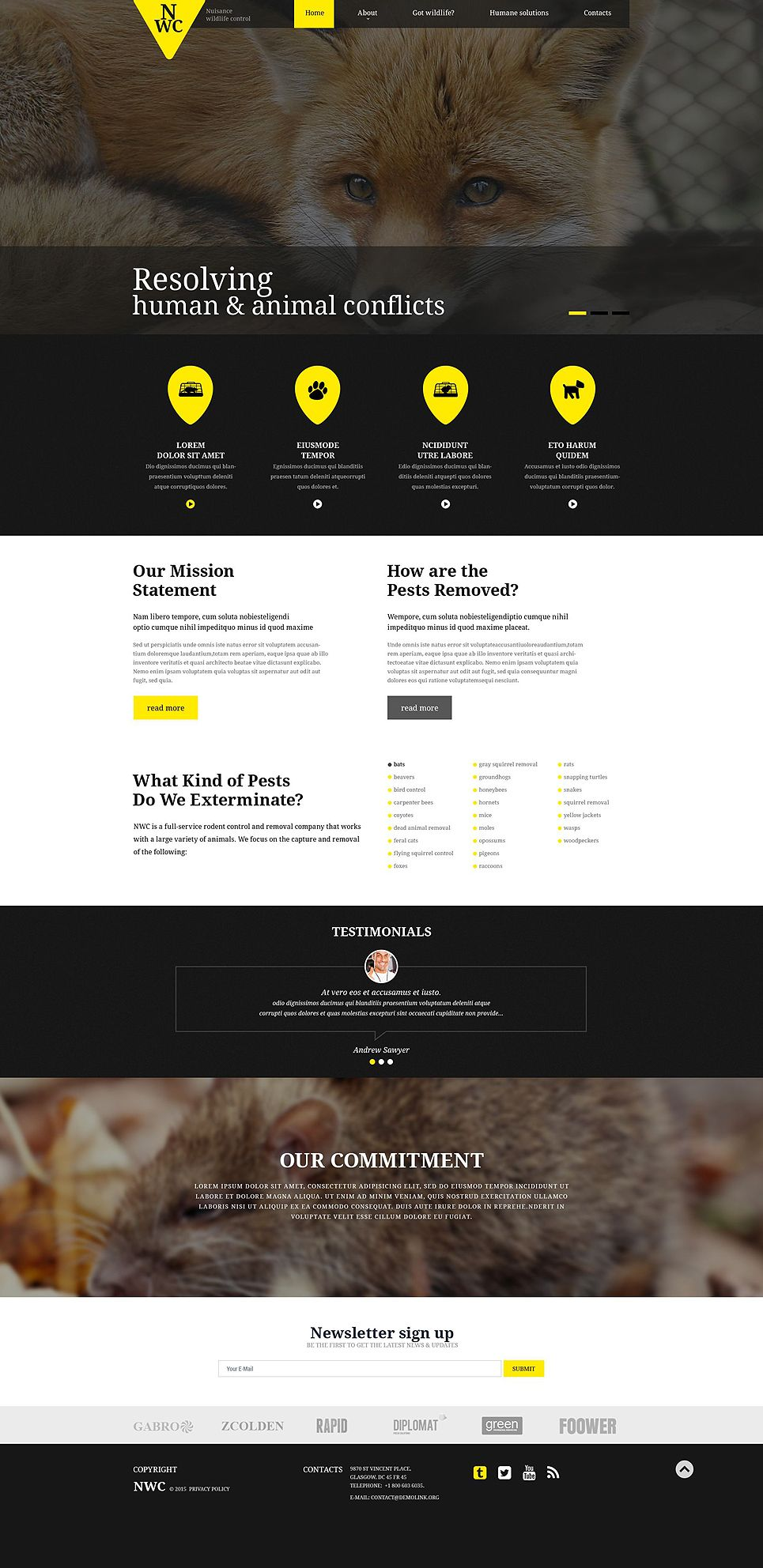 Wild Life Responsive Website Template Website Template Responsive Website Template Corporate Website Templates